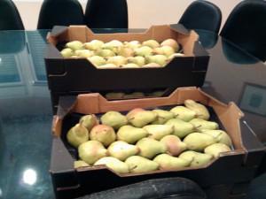 Fruta peras
